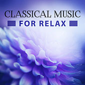 Classical Music for Relax – Relaxing Piano Sounds, Sleep, Ambient Instrumental Music, Chopin, Schubert, Mozart by Classical Lullabies