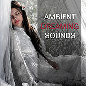 Ambient Dreaming Sounds – Sleep Well, New Age for Deep Sleep, Calm Relaxation, Stress Relief by Relax - Meditate - Sleep