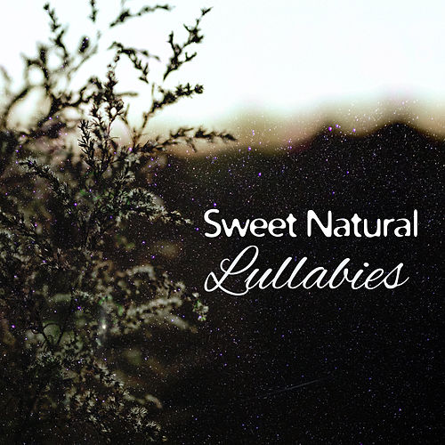 Sweet Natural Lullabies – Calming Sonds of Nature for Sleep, New Age Music for Deep Sleep, Fall Asleep de Deep Sleep Meditation