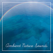 Ambient Nature Sounds – Soothing Waves, Calm Down & Rest, Relaxing Music to Mind Peace by Relaxing