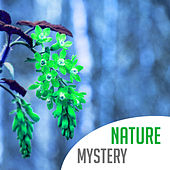 Nature Mystery – Calming Sounds to Rest, Music to Help with Sleep Disorders, Cure Insomnia, Relaxing Night by New Age
