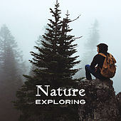 Nature Exploring – Nature Relaxation, Sounds to Calm Down, New Age Music, Stress Relief by Nature Sound Series