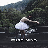 Pure Mind – Music for Relaxation, Meditation, Nature Sounds to Rest, Soothing Ocean, Relaxing Waves, Deep Sleep, Harmony by Ocean Sounds (1)