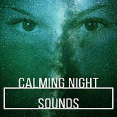 Calming Night Sounds – Relaxing Music to Sleep, Easy Listening, Healing Therapy, Soft Sounds by Nature Sounds Relaxation: Music for Sleep, Meditation, Massage Therapy, Spa