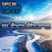Transiberian + A Part of Us by Temple One