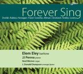 Forever Sing by Elem Eley