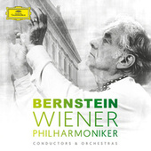 Leonard Bernstein & Wiener Philharmoniker by Various Artists