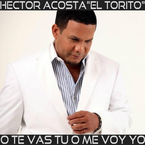 Te Vas Tu O Me Voy Yo by Hector Acosta