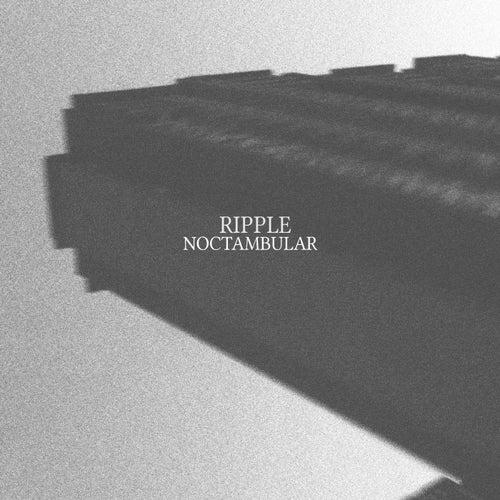 Noctambular by Ripple