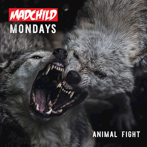 Play & Download Animal Fight by Madchild | Napster