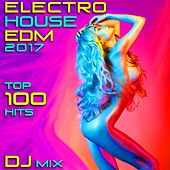 Electro House EDM 2017 Top 100 Hits DJ Mix by Various Artists