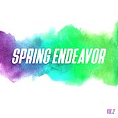Spring Endeavor, Vol. 2 by Various Artists