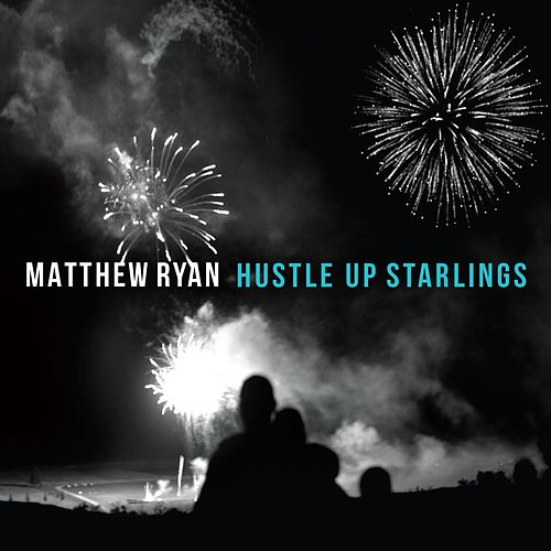 Hustle up Starlings by Matthew Ryan