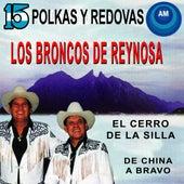 Polkas y Redovas by Los Broncos De Reynosa