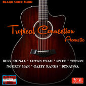 Tropical Connection by Various Artists