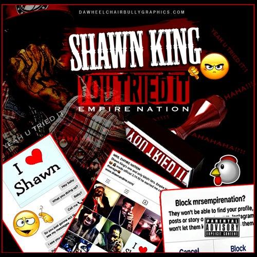 U Tried It by Shawn King