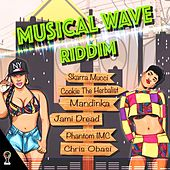 Musical Wave Riddim by Various Artists