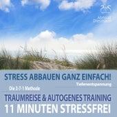 11 Minuten Stressfrei - Stress abbauen ganz einfach! Traumreise & Autogenes Training von Torsten Abrolat