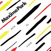 Risk to Exist by Maximo Park