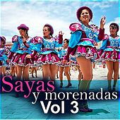 Sayas y Morenadas, Vol. 3 by Various Artists
