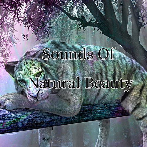 Sounds Of Natural Beauty de The Rest
