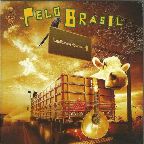 Pelo Brasil de Hamilton de Holanda