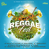 Play & Download Reggae Fest Riddim by Various Artists | Napster