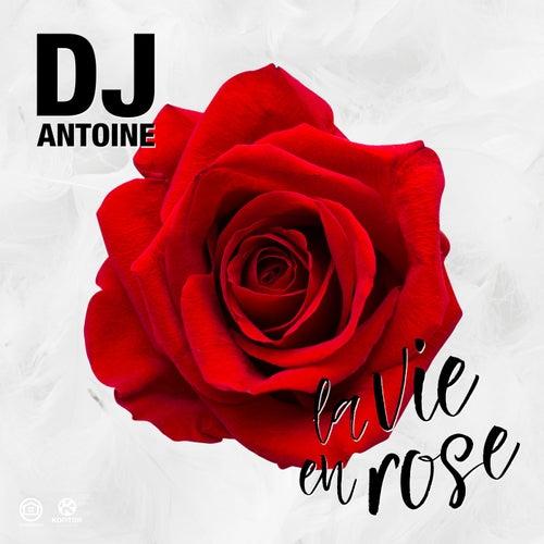 La Vie En Rose von DJ Antoine