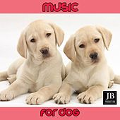 Music for Dog by Fly Project