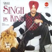 Singh Is King by Inderjeet Nikku
