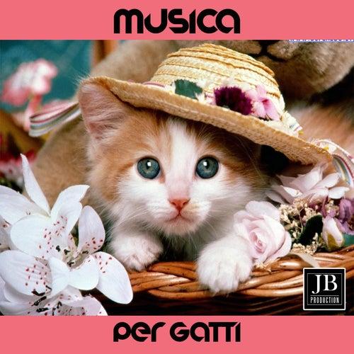 Musica Per Gatti de Fly Project