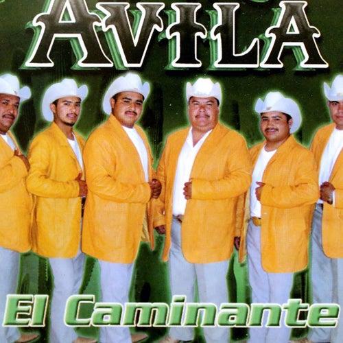 Play & Download El Caminante by Avila | Napster