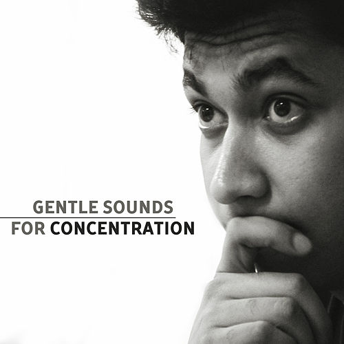 Gentle Sounds for Concentration – Best Music for Study, Better Memory, Easier Exam, Stress Relief, Mozart, Schubert von Classical Study Music (1)
