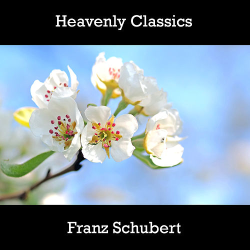 Heavenly Classics Franz Schubert by Franz Schubert