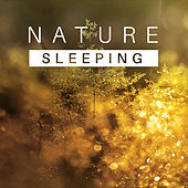 Sleeping Nature – Healing Music for Relaxation, Stress Relief, Sounds of Water, Singing Birds, Nature Sounds to Calm Down, Pure Mind by Sounds Of Nature