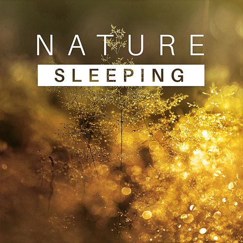 Play & Download Sleeping Nature – Healing Music for Relaxation, Stress Relief, Sounds of Water, Singing Birds, Nature Sounds to Calm Down, Pure Mind by Sounds Of Nature | Napster