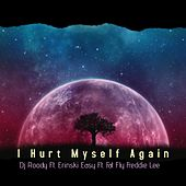 I Hurt My Self Again by DJ Roody