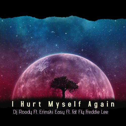 I Hurt My Self Again by DJ Roody