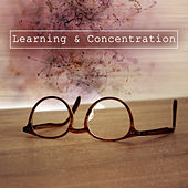 Learning & Concentration – Studying Music, Motivational Songs, Instrumental Sounds Help Pass Exam, Bach, Schubert, Mozart de Studying Music Group