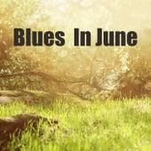 Blues In June von Various Artists