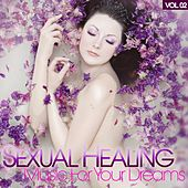 Sexual Healing - Music For Your Dreams, Vol. 2 by Various Artists