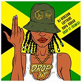 Drop It (Remix) by DJ Derezon