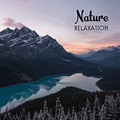 Nature Relaxation – Soft Music to Calm Down, Stress Relief, Zen, Peaceful Mind, Nature Sounds, Ambient Music by Nature Sounds (1)