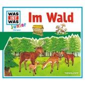 11: Im Wald von Was Ist Was Junior