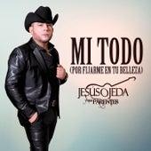 Mi Todo (Por Fijarme En Tu Belleza) by Jesus Ojeda Y Sus Parientes