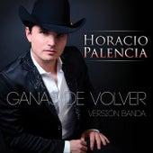 Ganas De Volver (Versión Banda) by Horacio Palencia