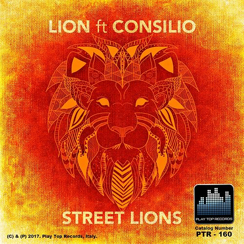 Street Lions by Lion