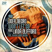 Won't Let Go by Joey Negro
