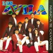 Nunca Te Olvidaré by Avila