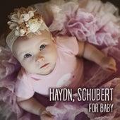 Play & Download Haydn, Schubert for Baby – Brain Power, Einstein Effect Music Collection, Development of Child, Brilliant Toddler, Instrumental Songs for Kids by Feliks Schutz Stefan Ryterband | Napster